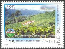 Nepal_bewerkt-1.jpg