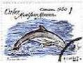 dolfijn-5_bewerkt-1.jpg