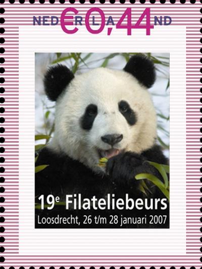 panda-panda-groot_bewerkt-1.jpg