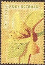 nr-12.jpg