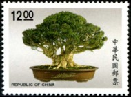 bonsai_936-190p.jpg