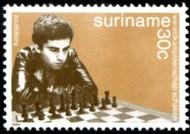 schaak-30-c-kasparov-883-190p.jpg