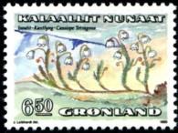 cypresheide-650-kr-873-195p.jpg