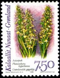 orchidee-750-kr-879-195p.jpg
