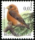 1-002-vogels-2000-911-125p.jpg