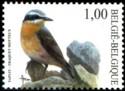 100-vogels-2002-918-125p.jpg