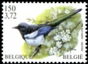 150-372-vogels-2001-917-125p.jpg