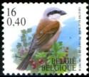 16-040-vogels-2000-915-125p.jpg