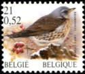 21-052-vogels-2001-916-125p.jpg
