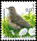 3-007-vogels-2000-913-125p.jpg