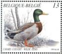 boekje-eenden-1989-898-125p.jpg