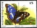 vlinders-1993-903-125.jpg