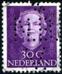 nbv-perf-100-125p.jpg