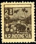 nri-2-sen-1946-995.jpg