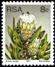 8-c-1977-094.jpg