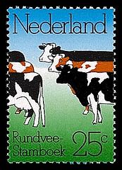 nvph-1052-dubbele-koe