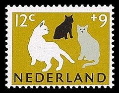 nvph-814-poezen-postzegels-zomerzegels