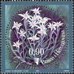 3-postzegelblog-postzegel-edelweiss-bosnie-herzogovina-2003