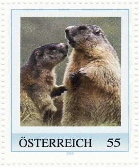 3postzegel-marmota-marmota-alpenmarmot-murmeltier-oostenrijk-postzegelblog
