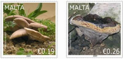 fungi_paddestoelen_malta_2009_postzegels_2