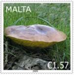 fungi_paddestoelen_malta_2009_postzegels_3