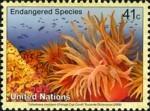 1-postzegel-koraal-united-nations-new-york-2008