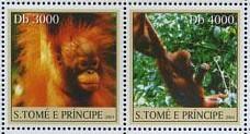 10-b-postzegel-orang-oetan-sao-tome-en-principe-2004