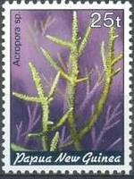 13-postzegel-koraal-papoea-nieuw-guinea-1982