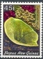 15-postzegel-koraal-papoea-nieuw-guinea-1982