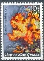 17-postzegel-koraal-papoea-nieuw-guinea-1982