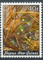 19-postzegel-koraal-papoea-nieuw-guinea-1982