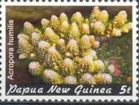 23-postzegel-koraal-papoea-nieuw-guinea-1982