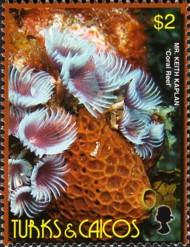 4-postzegel-koraal-turks-en-caicoseilanden-2006