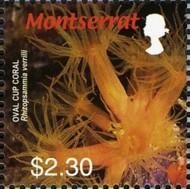 5-postzegel-koraal-montserrat-2006