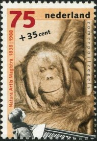 6-postzegel-orang-oetan-nederland-1988