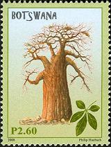 baobotswana