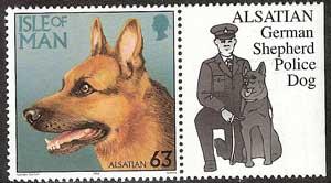 politie-hond-1