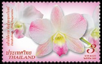 thailand_bloem_orchidee_5
