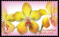 thailand_bloem_orchidee_6
