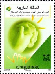 12 postzegel strijd tegen kanker Marokko 2008 1st National Cancer Awareness Day