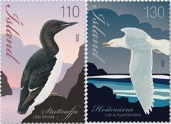 birds-iceland-2009