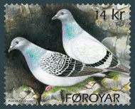 the-rock-pigeon-stamp-faroer