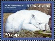 1 ijsbeer Azerbeidzjan 1 2007 (Knut 05-12-2007)