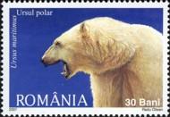 13 ijsbeer Roemenië 2007