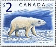 5 ijsbeer Canada 1998