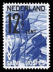 nvph-247