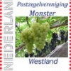 monster-56jr-druiven-postzegel