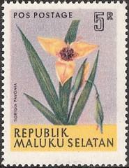 Maluku Selatan Rms