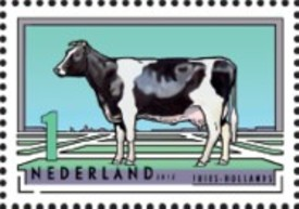 NVPH 2975 - Fries-Hollands