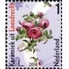 Zegel Mooi Nederland Loosdrecht 2014
